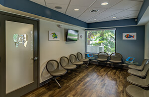 Waiting Room at Dr. Bob Pediatric Dentistry in South Miami, Florida